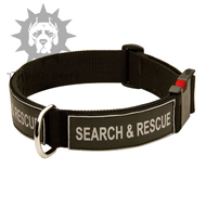 Quick Release Training Collar with Patches