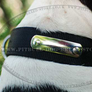 Personalised Dog Collar for Amstaff with Blank Name Plate