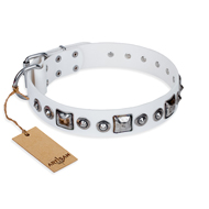 """Lustre of Fame"" FDT Artisan White Studded Pitbull Collar"