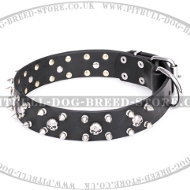 "Pitbull Collar FDT Artisan ""Jolly Roger's Spikes"" and Skulls"