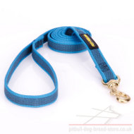 Pitbull Dog Leash of Blue Nylon with Non-Slip Effect