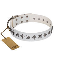 "Pitbull Leather Dog Collar ""Midnight Stars"" Artisan"