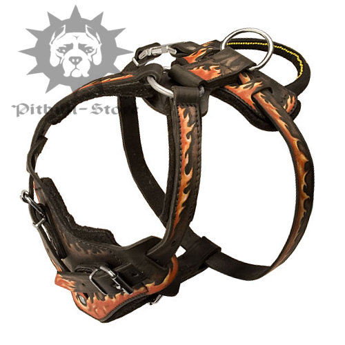 Dog Harness for Pitbull