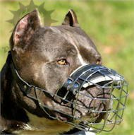 Wire dog muzzle UK, perfect for