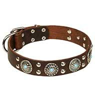 "Decorative Leather Dog Collar Azure Stones and ""Silver"" Studs"