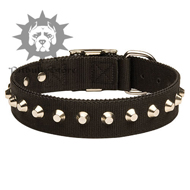 Gorgeous Wide Nylon Pitbull Collar With Nickel Pyramids