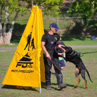 Schutzhund Blind for Professional Dog Sports & Training