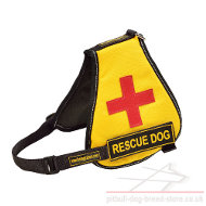 Service Dog Vest for Pitbull with Identification Patches