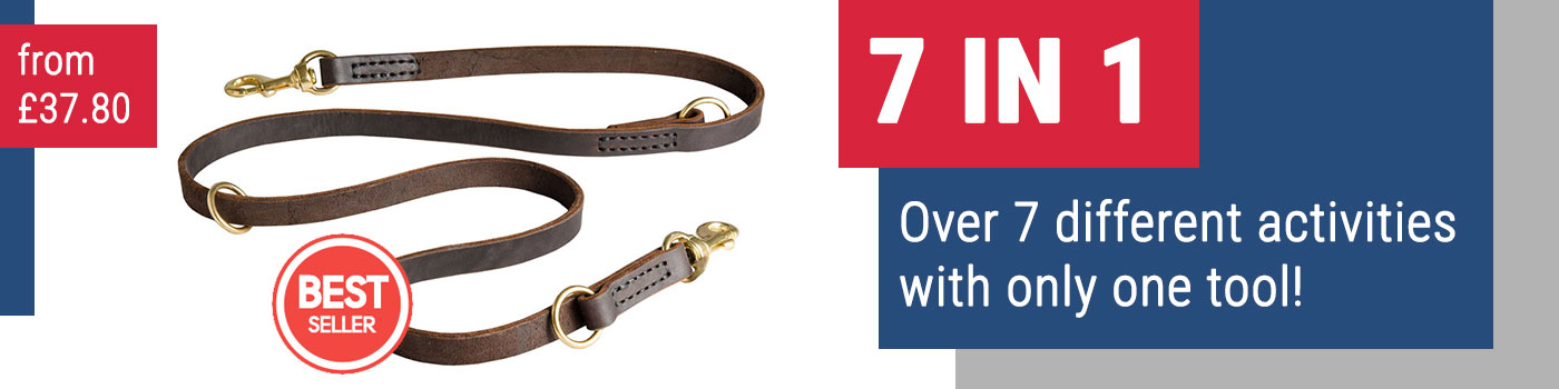 Leather Multi Functional Dog Lead, 3/4
