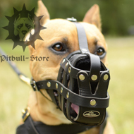 Staffordshire Bull Terrier Muzzle of Leather, Good Ventilation
