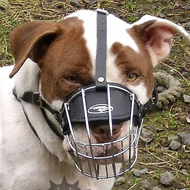Wire Dog Muzzle for English Staffy, Basket Design for Walking