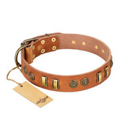 "Staffordshire Leather Dog Collar ""Natural Beauty"" FDT Artisan"