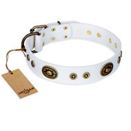 """Magnetic Appeal"" FDT Artisan Stud Collar for Dogs in White"