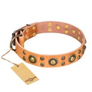 """Sophisticated Glamor"" FDT Artisan Studded Dog Collar in Tan"
