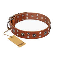 """Silver Elegance"" FDT Artisan Tan Leather Dog Collar with Studs"