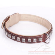 "Thick Leather Dog Collar for Pitbull ""Cube"" Brown"