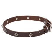 Dog Collar with Stars of Narrow Width for Walking