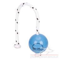 Top-Matic Fun Ball SOFT with Magnet Inside for Staffy Training