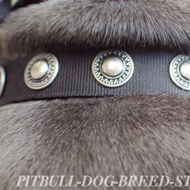 Vintage Fabric Dog Collar Strong Nylon with Circles for Staffy